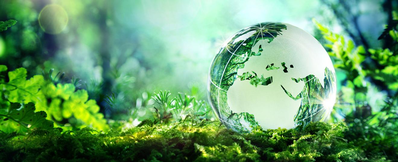 sustainability co in yokogawa electric corporation