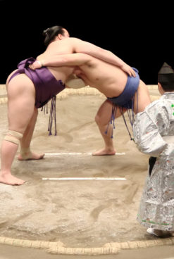 The Fascination of Sumo
