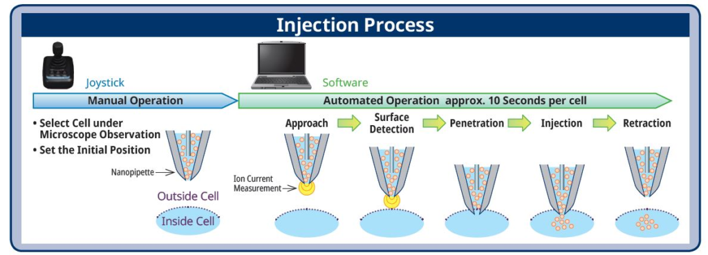 single-cell injection with nanopipette